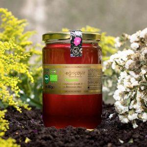 Organic Carob Blossom Honey