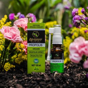 Organic Throat Spray with Propolis, 0.67oz - 20ml